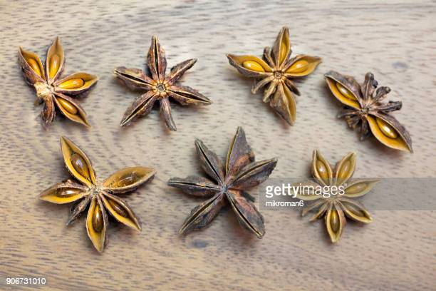 Star anise, close-up