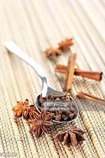 Star anise cloves and cinnamon sticks