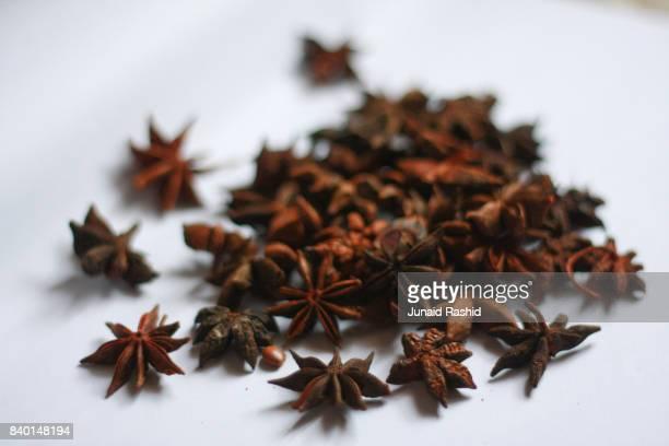 Star Anise (badiyan khatai), Illicium verum