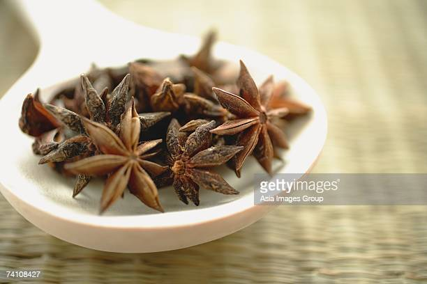 Star Anise in spoon, still life, close-up