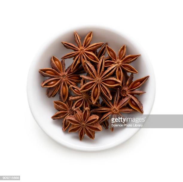 Star anise in white bowl