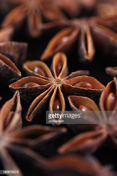 star anise - jill harrison stock pictures, royalty-free photos & images