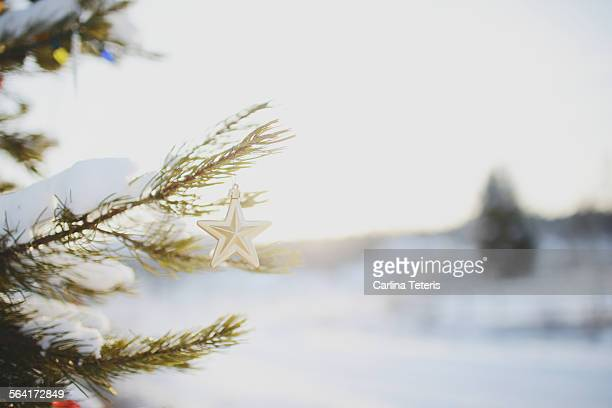 A star christmas ornament hanging on a snowy tree