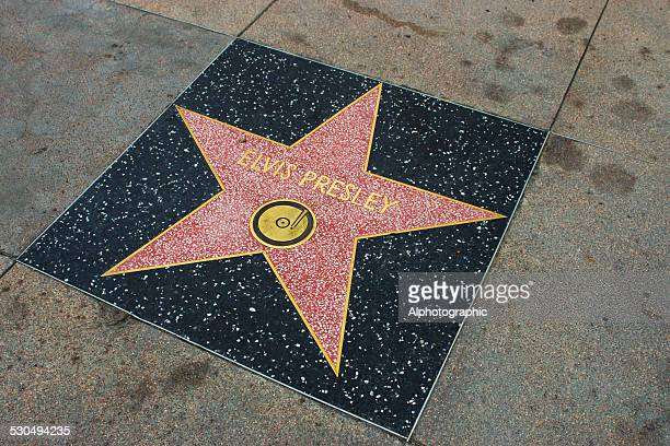 star on walk of fame - elvis presley stock pictures, royalty-free photos & images