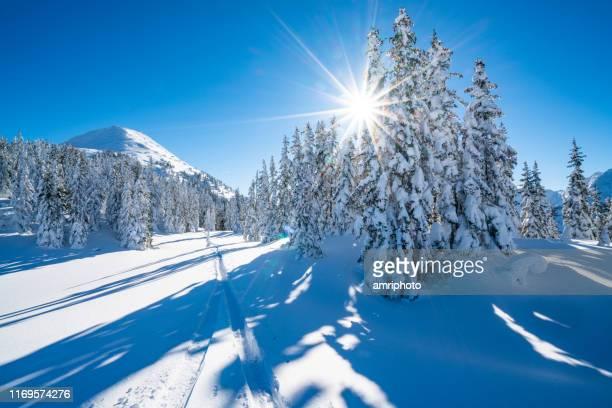 soleil de forme d'étoile dans le paysage enneigé de montagne d'hiver - sunny photos et images de collection