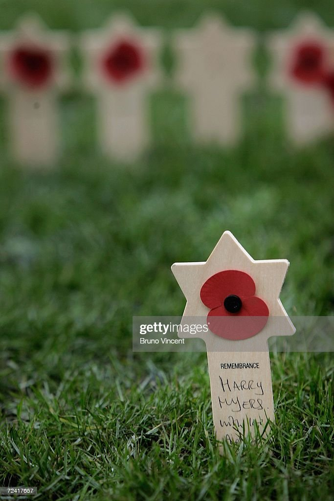 A Star Shaped Symbol Stands Among Crosses Bearing Remembrance