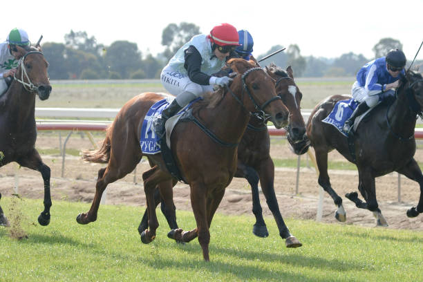 AUS: Echuca Racing Club Race Meeting