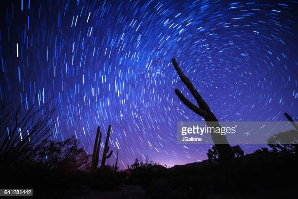 Star trail behind the silhouette of a cactus