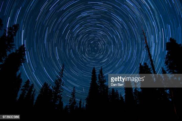 star trail through the pine trees - barr stock pictures, royalty-free photos & images