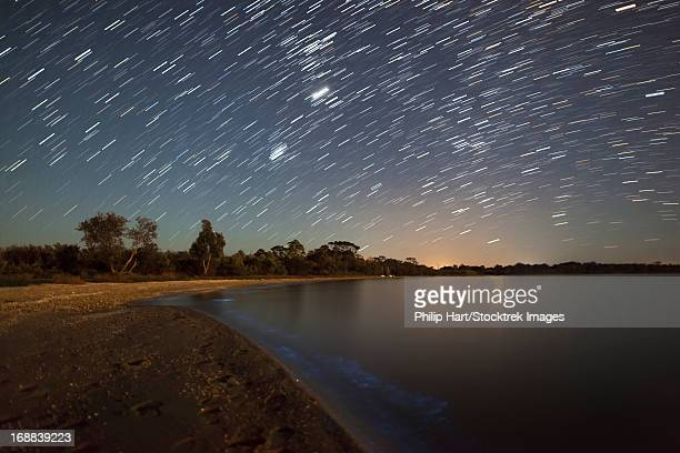 star trails and bioluminescence in the gippsland lakes, victoria, australia. - phosphorescence stock pictures, royalty-free photos & images