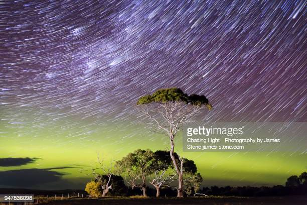star trails over a bright green arc of aurora with an illuminated tree in the foreground - aurora australis stock pictures, royalty-free photos & images