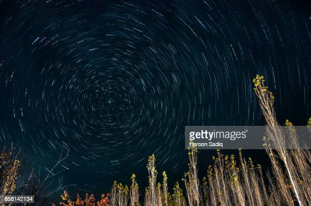 star trails - north star stock pictures, royalty-free photos & images