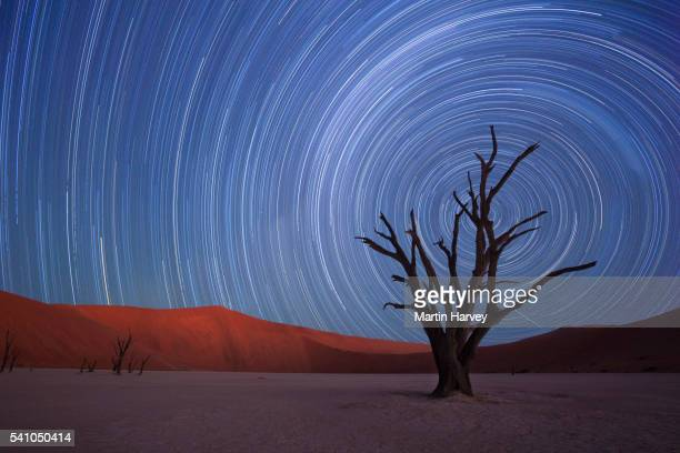 star trails,dead vlei, sossusvlei,namibia - dead vlei namibia stock pictures, royalty-free photos & images