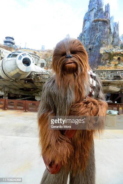 Star Wars character Chewbacca poses in front of the Millennium Falcon at the Black Spire Outpost at the Star Wars: Galaxy's Edge Walt Disney World...