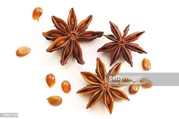 star-anises - スターアニス ストックフォトと画像