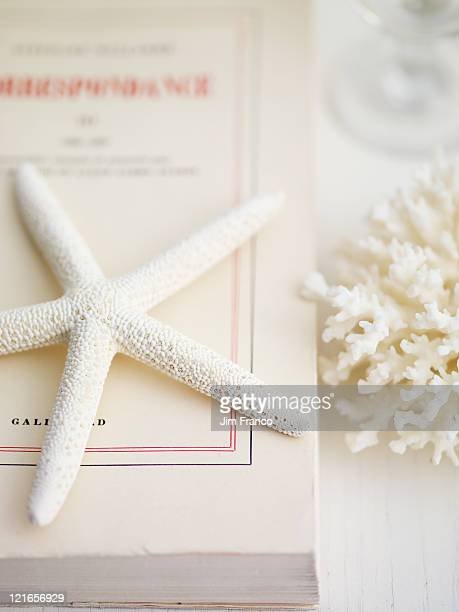 Starfish and coral on white table