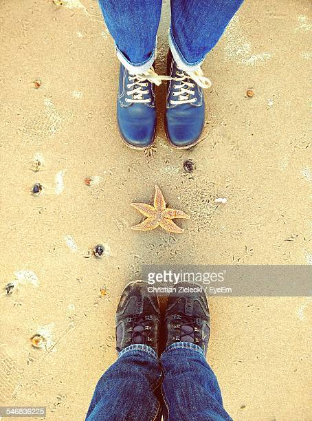 starfish between two pairs of legs - between stock pictures, royalty-free photos & images