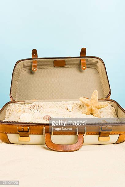 Starfish shells and sand in a suitcase