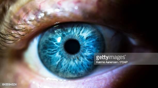 Staring blue eye
