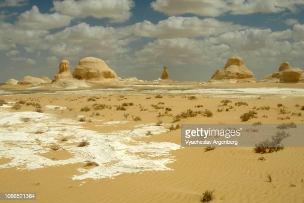 stark desert landscape of white desert, ethereal rock formations, egypt - argenberg ストックフォトと画像