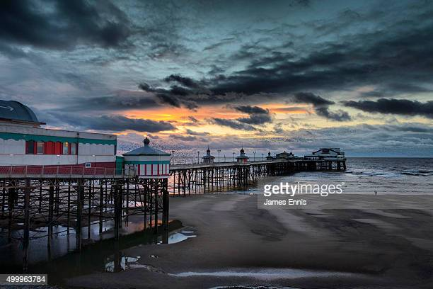 starling murmuration at sunset on the north pier, blackpool, uk - blackpool stock photos and pictures