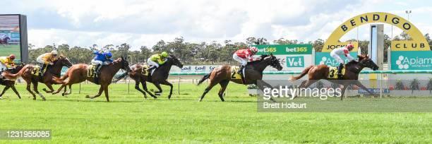Starry Legend ridden by Michael Dee wins the Apiam Animal Health VOBIS Gold Rush at Bendigo Racecourse on March 27, 2021 in Bendigo, Australia.