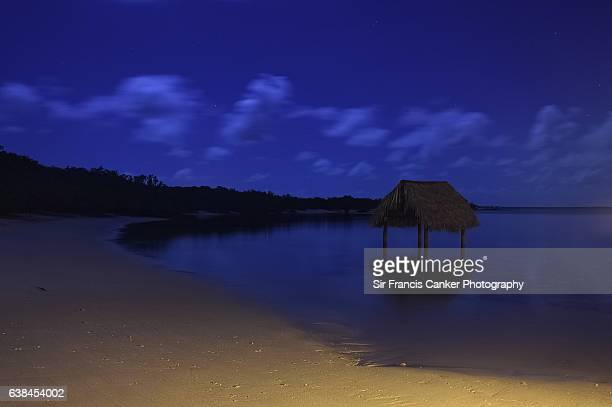 Starry night in the Caribbean sea with palm trees and white sand, Cuba