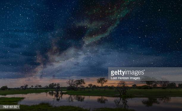 starry night sky over swamp, okavango delta, botswana, limpopo, south africa, africa - botswana stock pictures, royalty-free photos & images