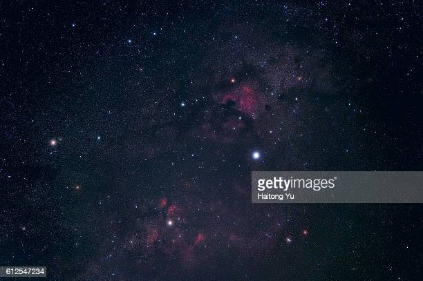 Stars and nebulae in the constellation Cygnus