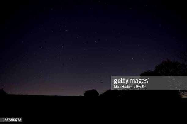 stars at night against silhouette of trees and hill - space and astronomy stock pictures, royalty-free photos & images