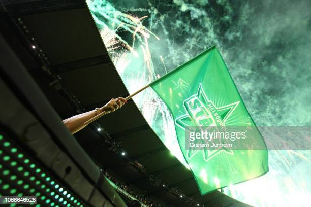 Stars fan celebrates victory in the Big Bash League match between the Melbourne Stars and the Melbourne Renegades at Melbourne Cricket Ground on...
