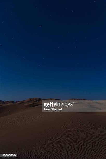 stars in the sesert - sahara stock pictures, royalty-free photos & images
