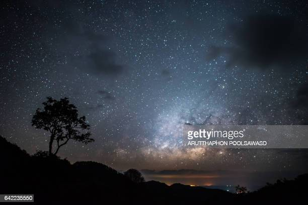 Stars Milky Way with lonely tree , nature landscape of sky