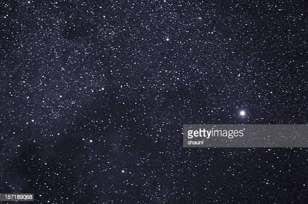 Stars der Cygnus