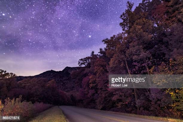 Stars of the Parkway
