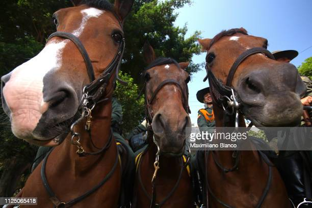 Start / Horses / Detail View / during the 2nd Tour of Colombia 2019 Stage 4 a 1444km race from Medellin to Medellin Atanasio Girardot Stadium /...