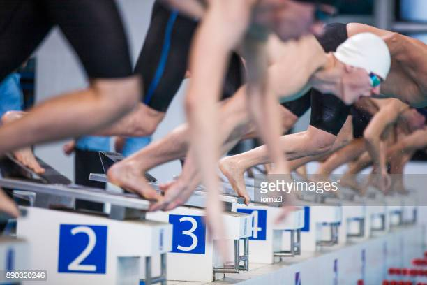 start of a swimming competition - competition group stock pictures, royalty-free photos & images