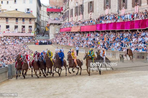 """start of the race the """"palio di siena"""" at the piazza di campo at siena city, italy. - siena italy stock pictures, royalty-free photos & images"""
