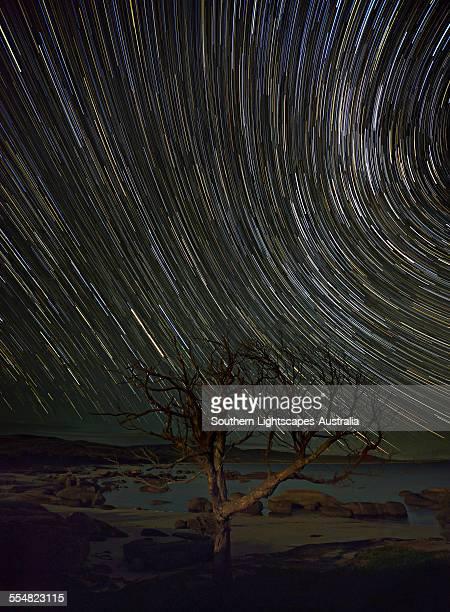 Star-trails at Sawyers bay