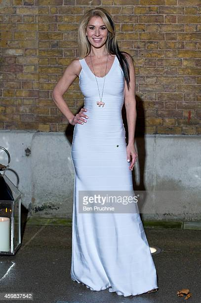 Stasha Lewis attends the private view of Stasha Palos: And The Stars Shine Down at Saatchi Gallery on December 2, 2014 in London, England.