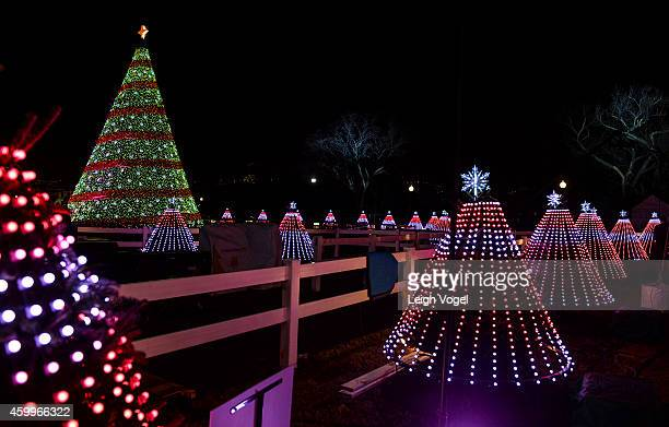 State and territory trees are seen during the National Park Foundation and Google's Made with Code National Christmas Tree Lightening Ceremony on...