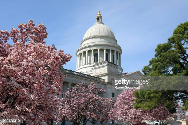 state capitol of arkansas in spring - rainer grosskopf stock pictures, royalty-free photos & images