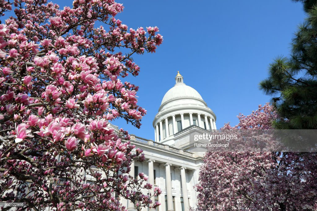 State Capitol of Arkansas in spring : Stock-Foto