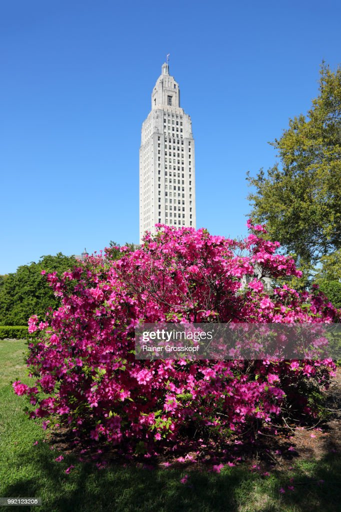 State Capitol of Louisiana with blooming azalea : Stock-Foto