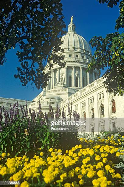 state capitol of wisconsin, madison - vilas_county,_wisconsin stock pictures, royalty-free photos & images