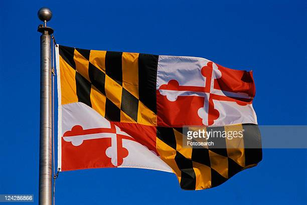 State Flag flying on a flagpole against a blue sky