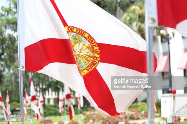 state of florida flag in the wind - florida us state stock pictures, royalty-free photos & images