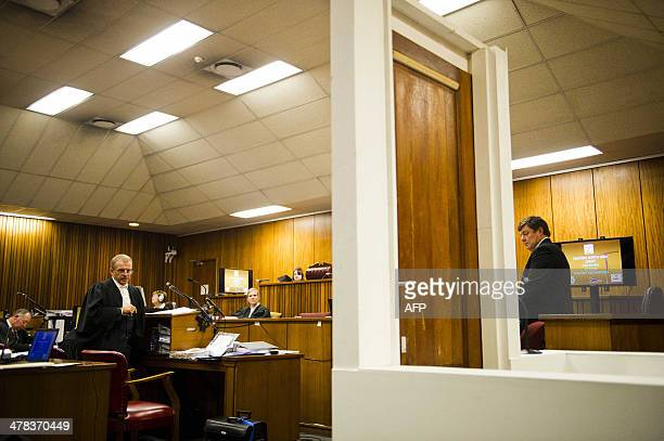 State prosecutor Gerrie Nel questions forensic expert Colonel Johannes Vermeulen during the murder trial of Oscar Pistorius at the North Gauteng High...