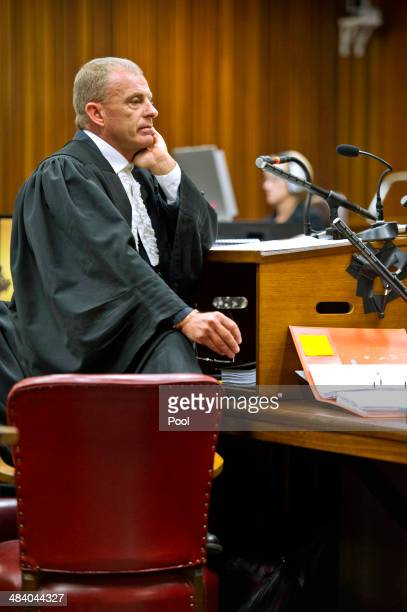 State prosecutor Gerrie Nel questions Oscar during cross examination in the Pretoria High Court on April 11 in Pretoria, South Africa. Oscar...