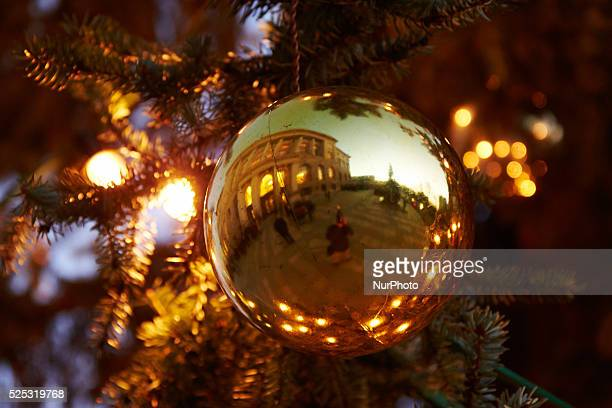 A stately 60 year old and 14 meters high from the Serbian spruce form forest office of the Pankow district adorns this year at Christmas time the...